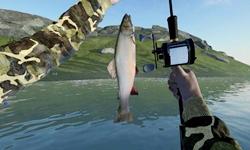 钓鱼游戏排行榜出炉,这几款钓鱼小游戏人气最高