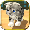猫咪模拟器  3.9.5