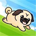 跑跑狗狗  1.0