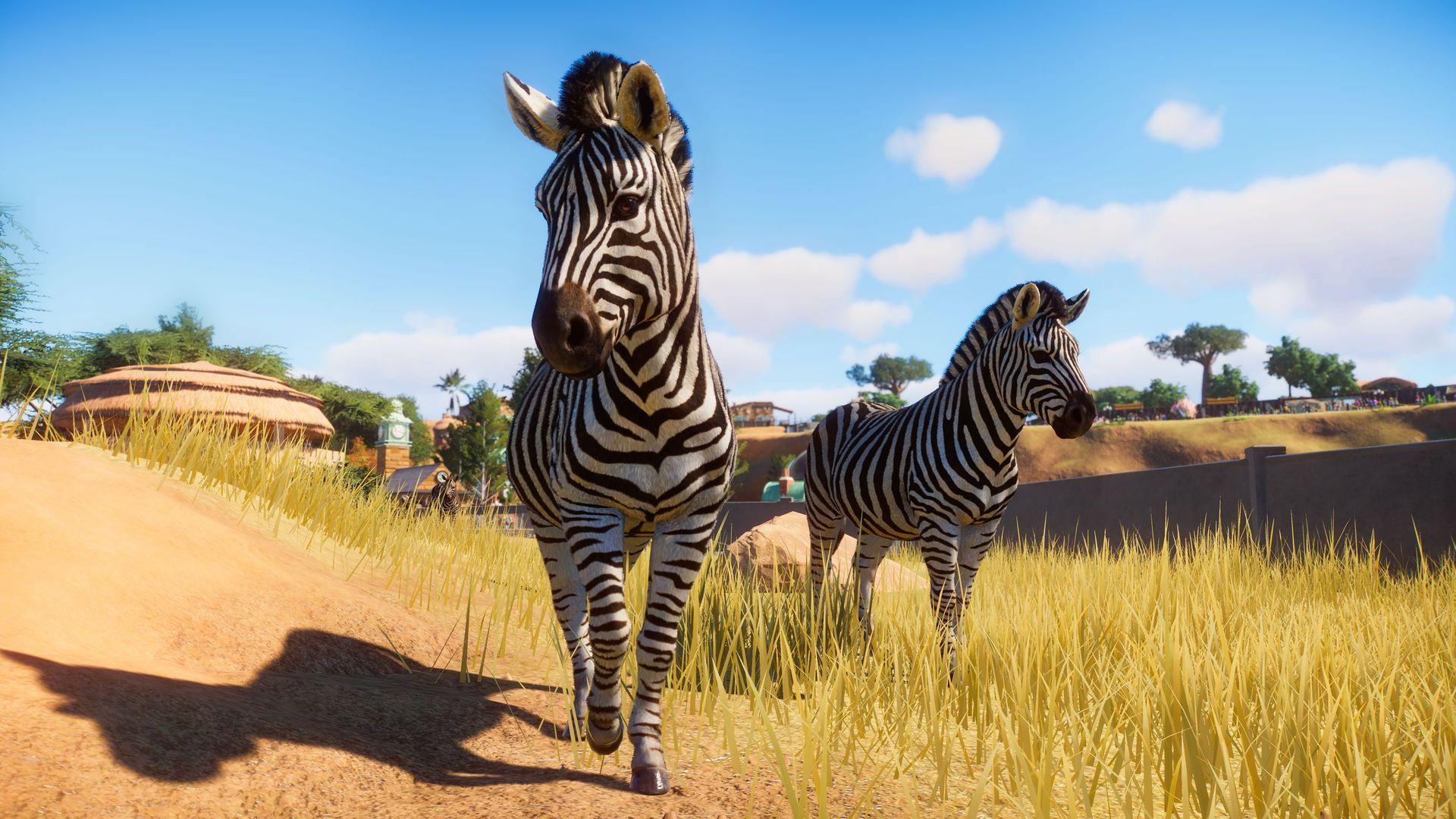 动物园之星手机版下载