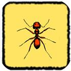 蚂蚁世界安卓版 v1.0