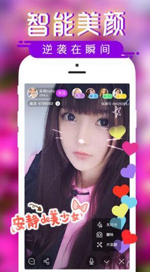 成版人猫咪视频app污下载
